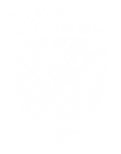 Grayshott Football Club